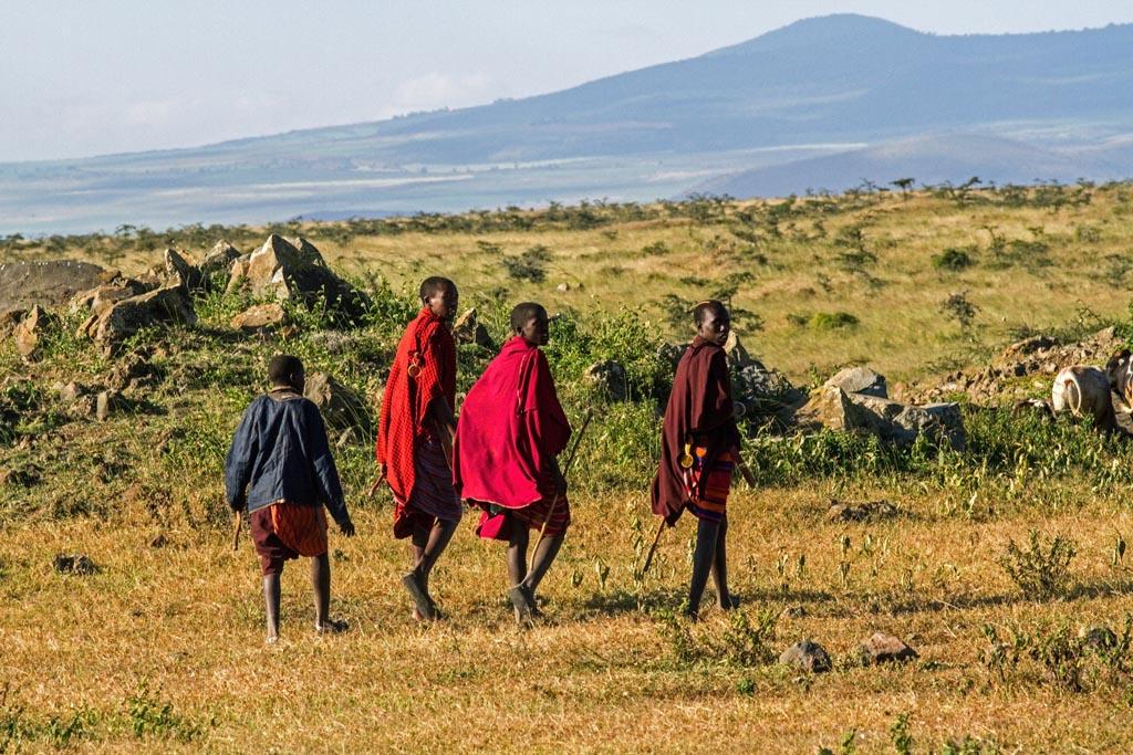 masai (1)